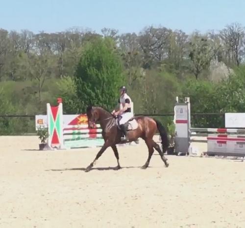 Duchatillon d'Eglefin Le Pin avril 2018 4